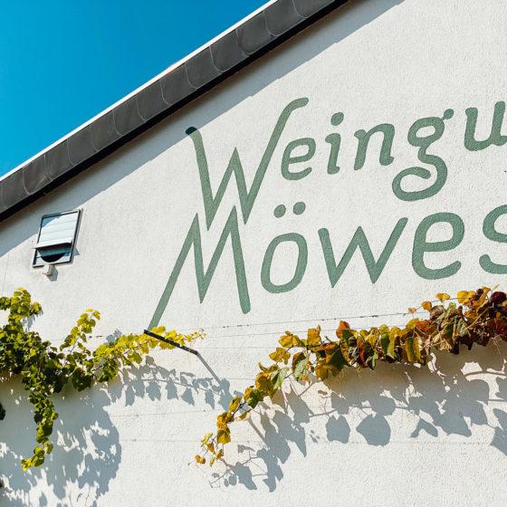 Weingut Möwes in der Pflalz