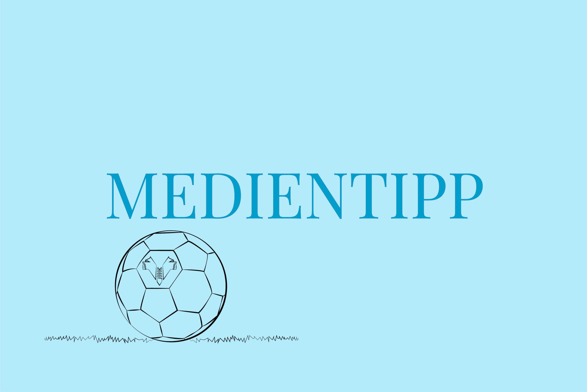 Medientipp Buchtipp Gardasee Eine Saison mit Verona Tim Parks