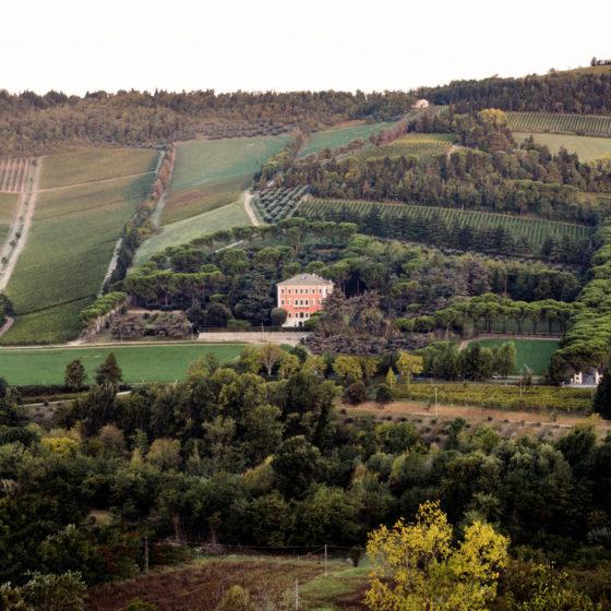 Weintipp Emilia-Romagna Noelia Ricci