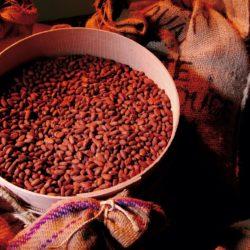 Einkaufstipp Schokolade Vestri Arezzo