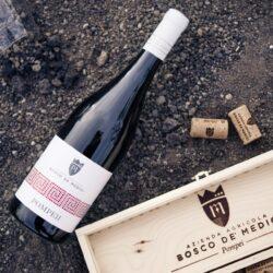 Wein Vesuv Pompeji